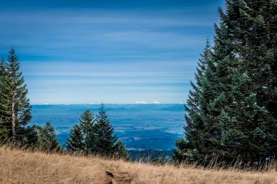 Mary's Peak 2