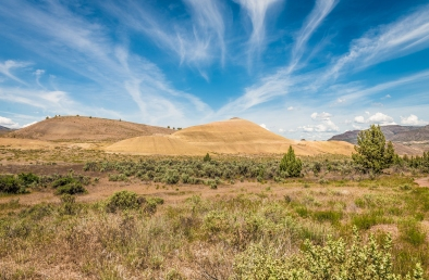 The Painted Hills - Leaf Hill Trail