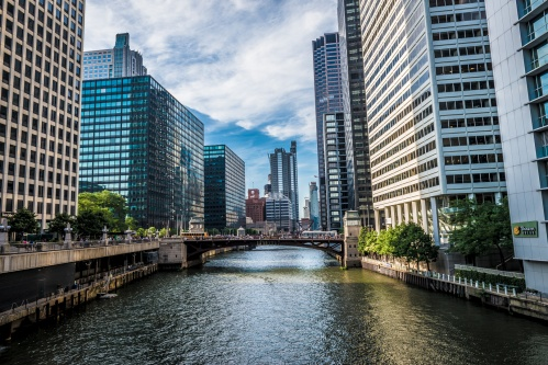 The Chicago River
