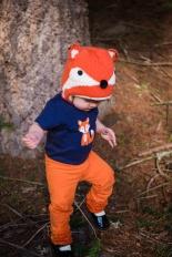 Riley the Fox
