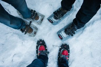 Let the snowshoeing begin!