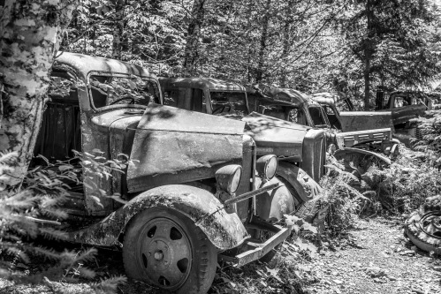 Opal Creek Cars