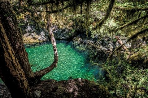 Opal Creek 2016-18