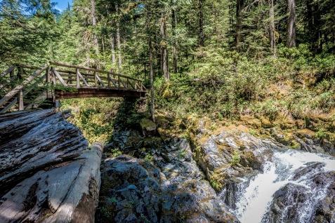 Opal Creek 2016-19