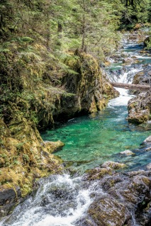 Opal Creek 2016-20