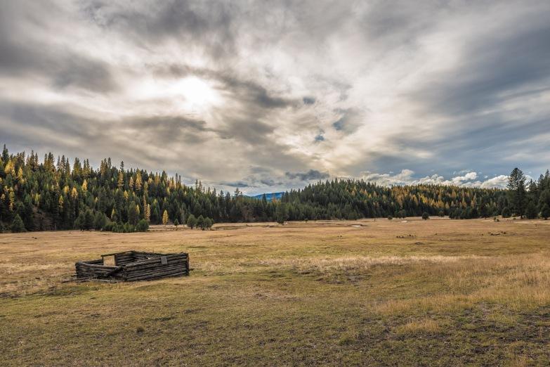 Starkey Cabin