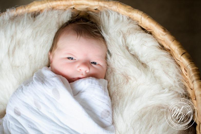 Violet Pearl's Newborn Photos-14