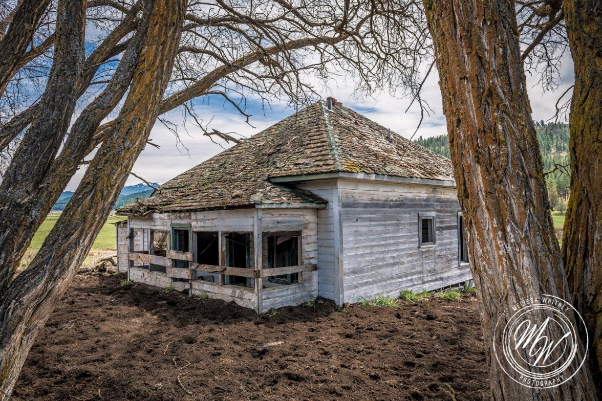 Abandoned Prineville Homestead-2