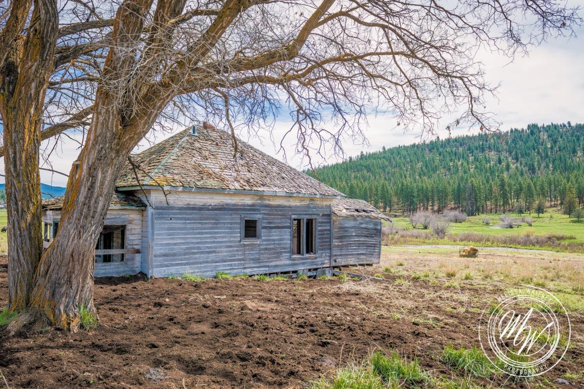 Abandoned Prineville Homestead-3