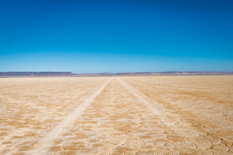Alvord Desert-8