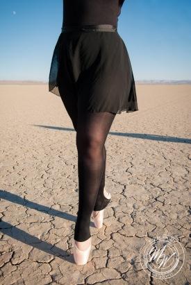 Amber - Alvord Desert-2