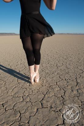 Amber - Alvord Desert