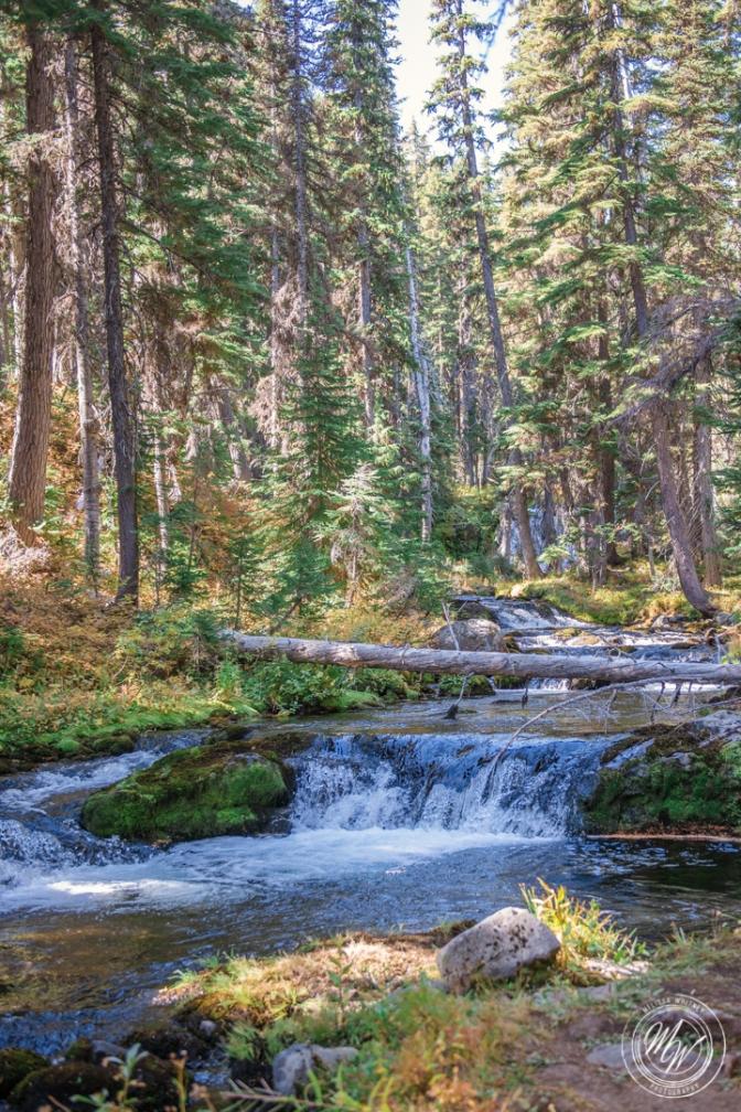 Tumalo Falls Hike-21