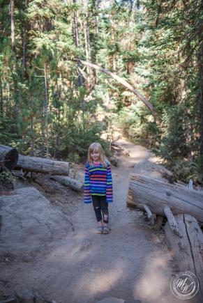 Tumalo Falls Hike-6