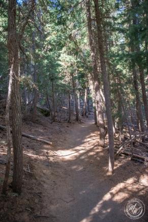Tumalo Falls Hike-7