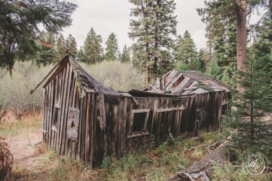 Return to the Ochoco Mines-56