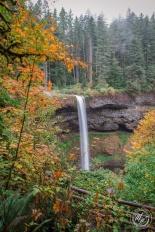 Silver Falls October 2018-11