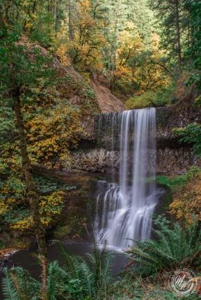 Silver Falls October 2018-15