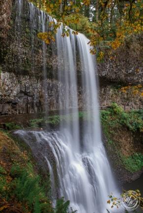 Silver Falls October 2018-16