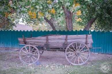 Brother-Sister Road Trip 2018 - Day 3 - Benton Hot Springs-61