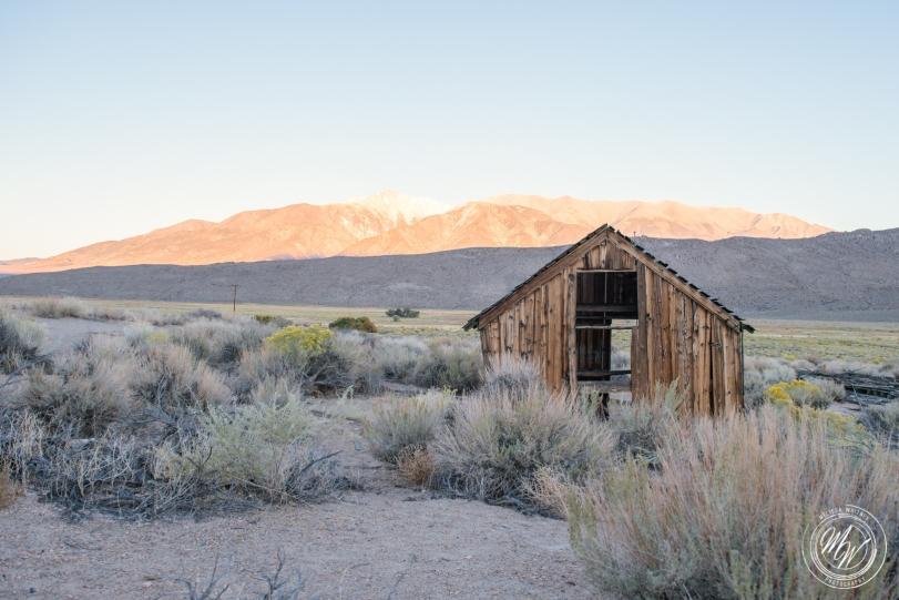 Brother-Sister Road Trip 2018 - Day 3 - Benton Hot Springs-68