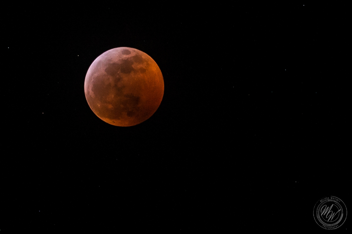 Super Blood Wolf Moon 1-20-2019-2