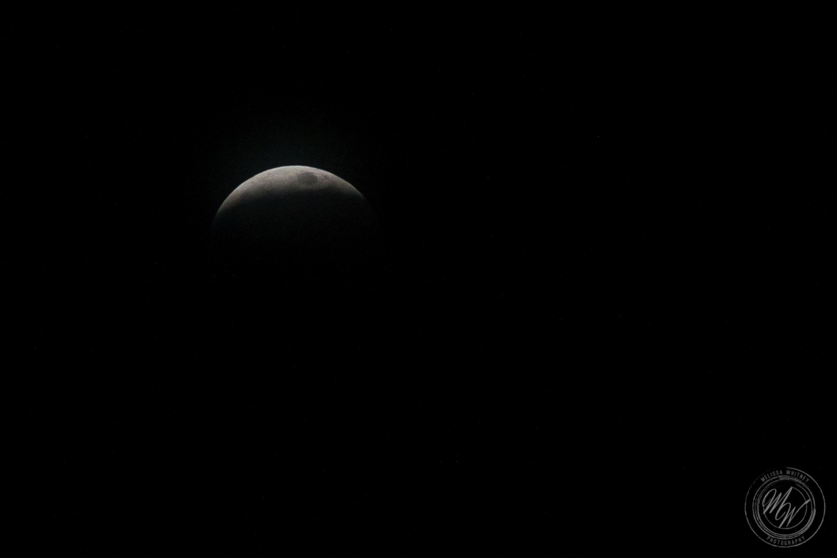 Super Blood Wolf Moon 1-20-2019