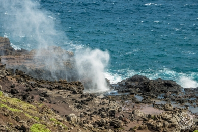 Blow Hole, Ohai Trail, Honalua Trail-5