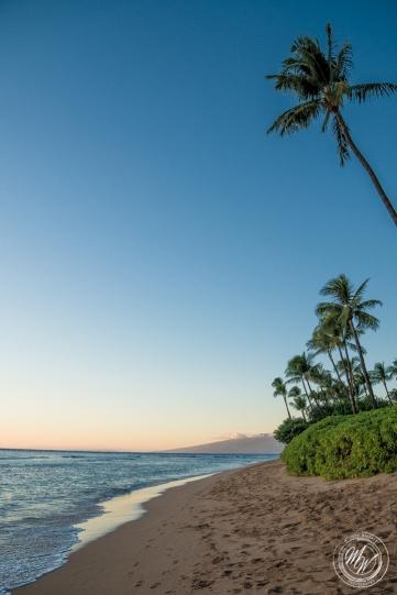 Ka'anapali Beach-6