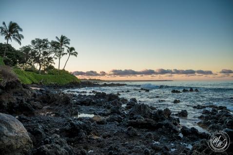 Makena Beach and Kapalua Bay-4