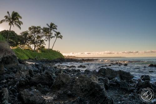 Makena Beach and Kapalua Bay-8
